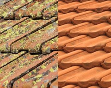 Démoussage toiture à Habarcq et dans tout les Hauts-de-France